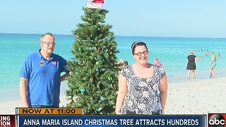 Hundreds flock to see Christmas tree on the beach