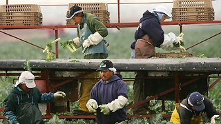 House Passes Citizenship Bill For Farmworkers