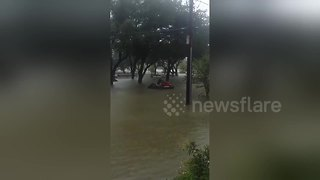 Man rides jet ski in Houston flood during Hurricane Harvey - Video