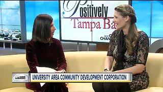 Positively Tampa Bay: University Area Game Changer