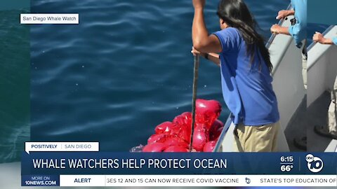 San Diego whale watchers help protect ocean