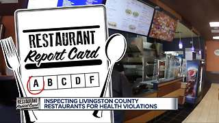 Restaurant Report Card: Pizza parlors, coney islands and bar & grills! - Video