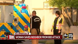 Woman helps neighbor as he was being stung by bees in Glendale - Video