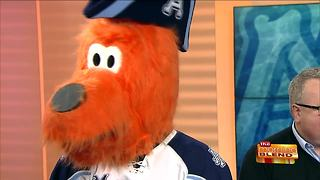 Roscoe Shares an Exciting Admirals Giveaway - Video