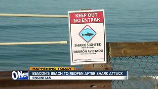 Encinitas beach reopening after weekend shark attack
