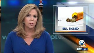 Gov. Scott signs medical marijuana legislation - Video