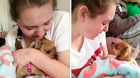 Teenager Sheds Happy Tears After Receiving Surprise Support Dog