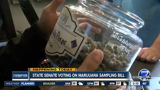 State Senate voting on marijuana sampling - Video