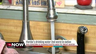 Report finds Florida drinking water ranks 2nd worst in nation - Video