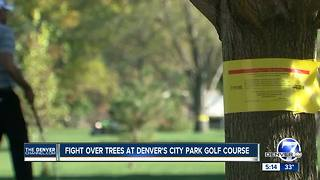 Judge allows storm-water drainage project at City Park Golf Course to proceed - Video