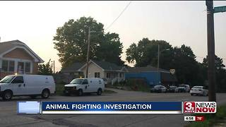 OPD investigates animal fight incident 5p.m. - Video