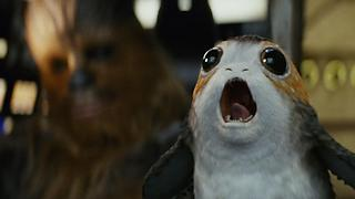 Visit the Real-Life Porgs of Skellig Michael - Video