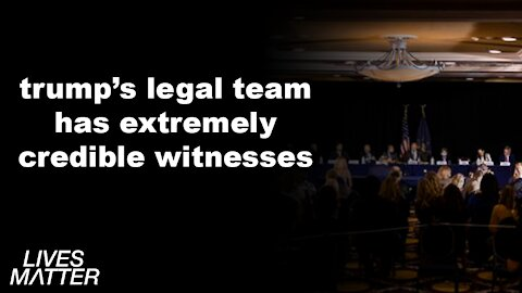 TRUMP'S LEGAL TEAM HAS INCREDIBLE WITNESSES!