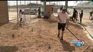 High school students build rain garden