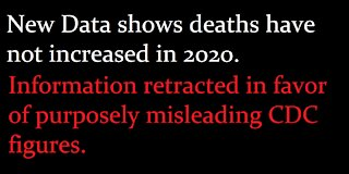 Total Deaths have not increased in 2020. Lives are being ruined on a lie.