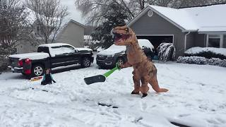 SNOW WAY! A T-Rex Plays In the Snow