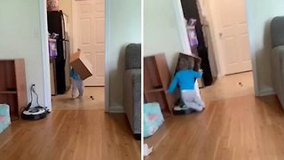 Hilarious moment little girl with box on head walks into door frame