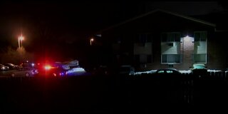 4-year-old boy killed in overnight shooting