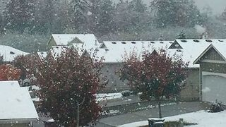 Snow Falls Across Puget Sound Area, Moving North of Seattle - Video