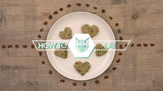 DIY Cat Treats: Oaty tuna hearts - Video
