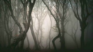 5 Of The Most Creepiest Locations You Can Visit