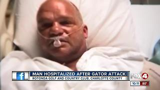 Man Hospitalized after Gator Attack - Video
