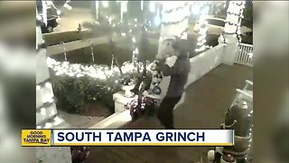 Security camera captures someone stealing Christmas elf in South Tampa