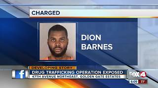 Man arrested in massive drug operation - Video