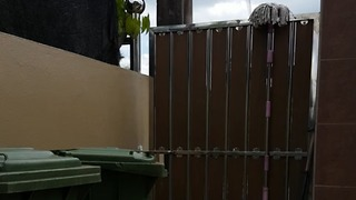 Dog masters the art of climbing - easily scales over fence