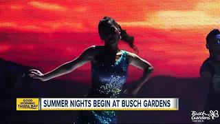 Busch Gardens Tampa Bay kicks off 'Summer Nights' with party zones, later hours and more - Video