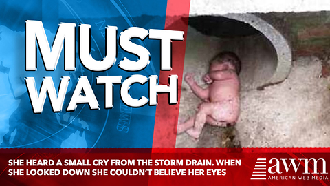She Heard A Small Cry From The Storm Drain. When She Looked Down She Couldn't Believe Her Eyes