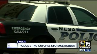 Police nab alleged storage robber in Mesa - Video