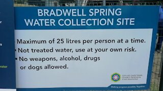 SOUTH AFRICA - Cape Town - Bradwell Spring Opening (Video) (dzx)