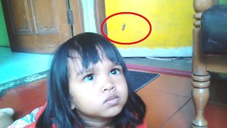 Kids Furious at Spider  - Video