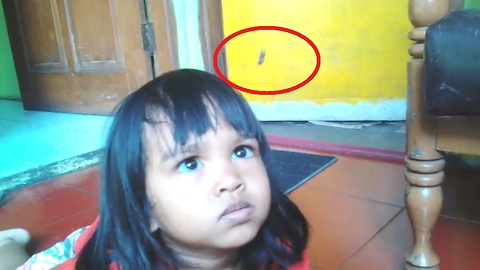Kids Furious at Spider