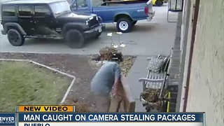 Man caught on camer stealing packages - Video