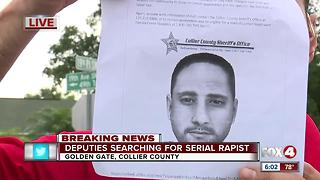 Collier deputies seeking rape suspect - Video