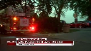 Man rescued from Lake Michigan dies - Video