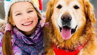 Holiday Gift Guide: 3 Winter Outfits for Dogs - Video