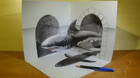 Great White Shark, Trick Art in 3D, Drawing an Amazing Animal by Vamos