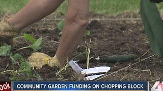 Kansas City Community Gardens faces funding cuts - Video