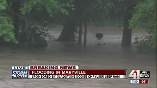 Flash flooding hits Maryville - Video