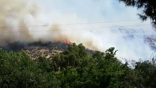 Jennings Fire Near San Diego Grows to 400 Acres, Threatens Homes - Video