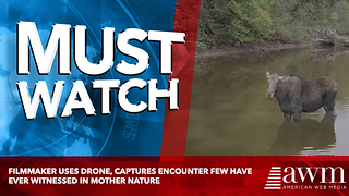 Filmmaker Uses Drone, Captures Encounter Few Have Ever Witnessed In Mother Nature - Video