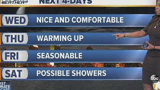 Angelica's Forecast - Video