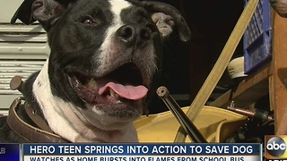 Teen springs into action to save dog from burning home - Video