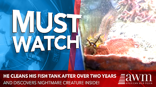 He Decided To Finally Clean Fish Tank After 2 Years, Leads to Unsettling Discovery - Video