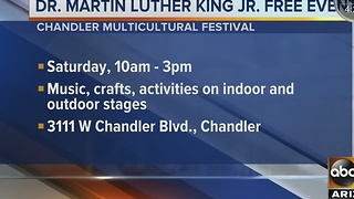 Smart Shopper shows the best Martin Luther King Jr. Day free events - Video