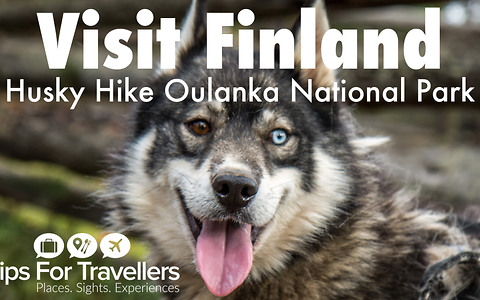 Visit Finland: Hiking with huskies in Oulanka National Park