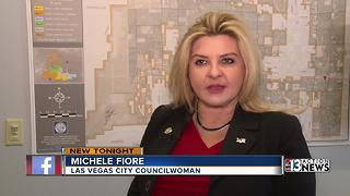 Councilwoman Michele Fiori talks about arming teachers - Video